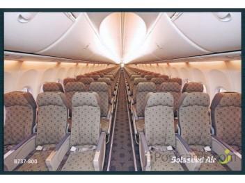 Cabin, Solaseed Air B.737-81D