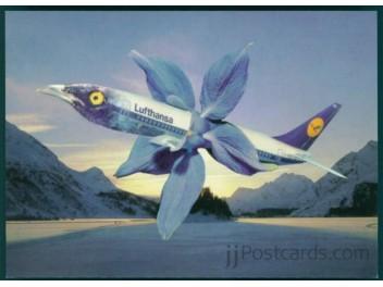 Geschmückter Flug, Lufthansa B.737