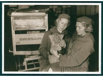 Swissair Stewardess with lion cub