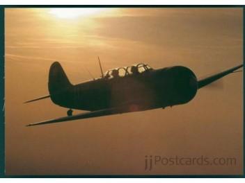 Avia C-11 (Yak-11), Privatbesitz