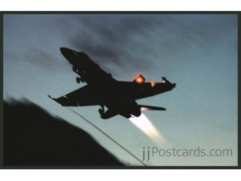 Air Force Switzerland, F/A-18 Hornet