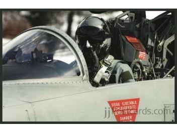 Air Force Switzerland, F-5 Tiger II