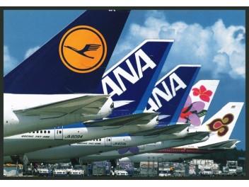 Narita: 747 tail LH, ANA, JAL, Thai