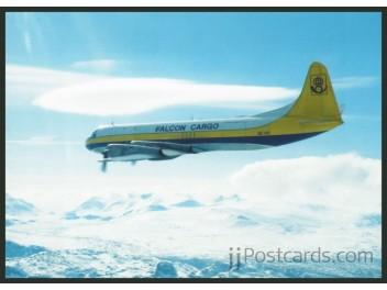 Falcon Air - Falcon Cargo, Electra